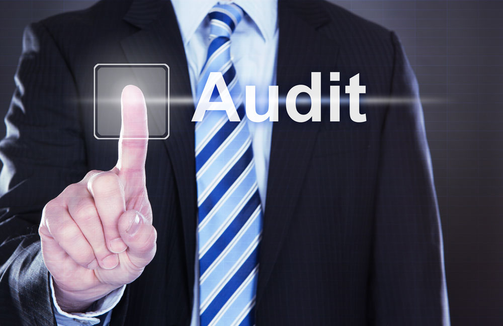 Audit and inspections Havem